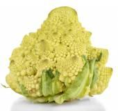 Romanesco broccoli isolated on white — Stock Photo