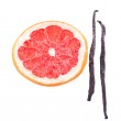 Dried grapefruit with vanilla beans isolated on white — Stock Photo #61303417