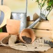 Rustic table with flowers, pots, potting soil, watering can and plants on bright background. Planting flowers concept — Stock Photo #61312065