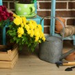 Flowers in pot on chair, potting soil, watering can and plants on floor on bricks background. Planting flowers concept — Stock Photo #61312085