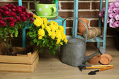 Flowers in pot on chair, potting soil, watering can and plants on floor on bricks background. Planting flowers concept — Stock Photo
