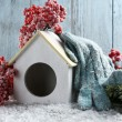 Handmade birdhouse in winter — Stock Photo #61369327