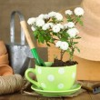 Rustic table with flowers, pots, potting soil, watering can and plants on sackcloth background. Planting flowers concept — Stock Photo #61374347