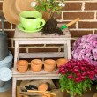 Flowers in wooden box, pots and garden tools on bricks background. Planting flowers concept — Foto de Stock   #61374365