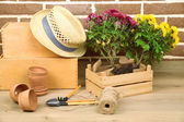 Flowers in pot, potting soil, watering can and plants on bricks background. Planting flowers concept — Stock Photo