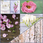 Collage of photos with flowers on wooden background — Stock Photo