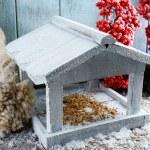 Handmade birdhouse in winter — Stock Photo #61760413