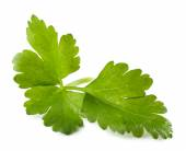 Parsley leaves isolated on white — Stock Photo