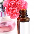 Bottle of perfume with clove on white background — Stock Photo #62123277