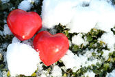Two red frozen heart on snow and green plants background — Stock Photo