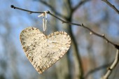 Tree branch with heart decoration on nature background — Stock Photo