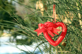 Bush with heart decoration — Stock Photo