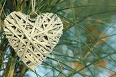 Bush with heart decoration — Stock Photo