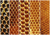Honeycomb collage — Stock Photo