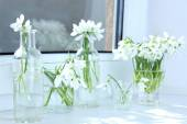 Bouquets of snowdrops in vases — Stock Photo