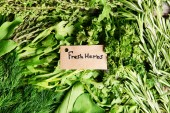 Different fresh herbs close-up — Stock Photo