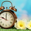 Alarm clock on green grass, on nature background — Stock Photo #62481029