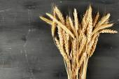 Spikelets of wheat on dark wooden background — Stock Photo