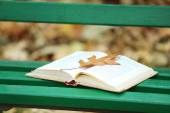 Open book with leaf lying on the bench in autumn park — Stock Photo
