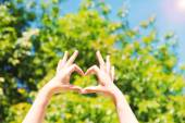 Young woman's hands making heart shape frame on nature background — Stock Photo