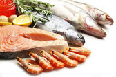 Fresh catch of fish and other seafood close-up — Foto de Stock