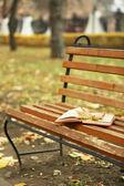 Livre ouvert avec feuille couché sur un banc brun en automne parc — Photo