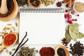 Spices with recipe book — Stock fotografie