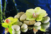 Orchid flowers with pebble stones — Stock Photo