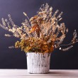 Bouquet of dried flowers in vase on table and dark background — Stock Photo #62951643