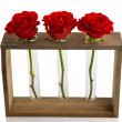 Three fresh roses in glass vases and wooden stand isolated on white — Stock Photo #62955411