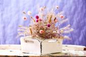 Dried flowers in pot on bright background — Stock Photo