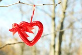 Tree branch with heart decoration — 图库照片