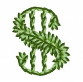Dollar sign made of tree leaves isolated on white — Stockfoto