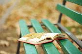 Libro aperto con il foglio su di esso sdraiato sulla panca nella sosta di autunno — Foto Stock