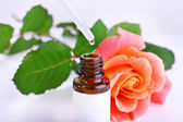 Dropper bottle of perfume with rose on light background — Stock Photo