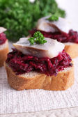 Rye toasts with herring and beets on tablecloth background — Stock Photo