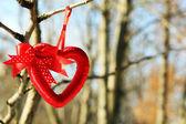Tree branch with heart decoration — Zdjęcie stockowe