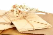 Old letters with dry flowers — Stock Photo