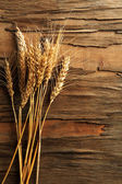 Spikelets of wheat on wooden background — Stock Photo