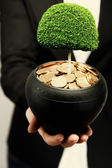 Green tree growing in ceramic pot full of coins, pot in hand — Stock Photo