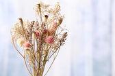 Boeket gedroogde bloemen — Stockfoto