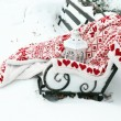 Warm plaid on bench in park in winter time — Stock Photo #63678719