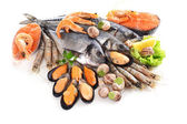 Fresh fish and other seafood — Stock Photo