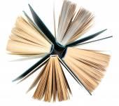 Gruppo di libri — Foto Stock