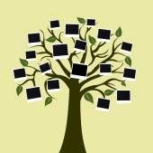 Big tree with photo cards on color background — Foto Stock