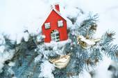 Covered with snow and Christmas decoration branch of spruce, outdoors — Stok fotoğraf