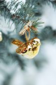 Covered with snow and Christmas decoration branch of spruce, outdoors — Zdjęcie stockowe