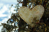 Bush with heart decoration on winter nature background — Stock Photo
