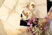 Vintage minnen med torra blommor på nära håll — Stockfoto