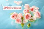 Floating pink roses in light blue waters — Stock Photo